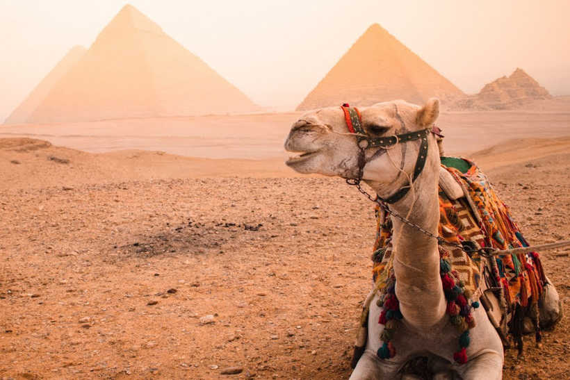 How To Travel to Egypt